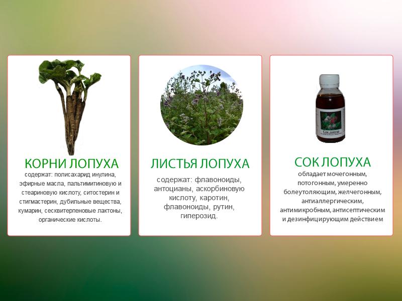 «Сок Лопуха» - экстракт из корней и листьев.